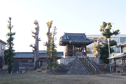 191216三郷彦江神社椨⑥
