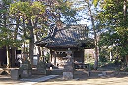 200130熊野神社タブノキ⑧