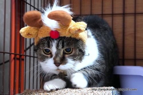クリスマスイブ