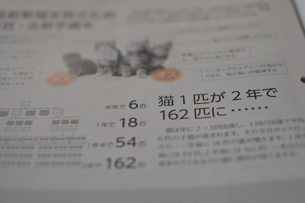 1DSC_7542.jpg