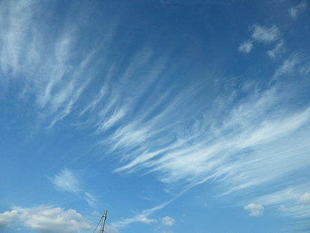 0907秋雲