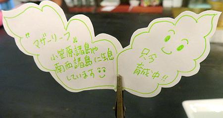 1006可愛い葉