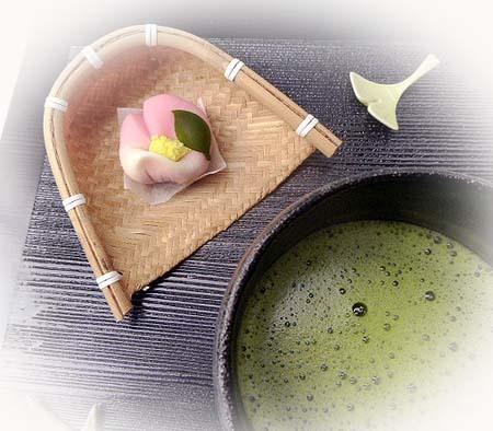 1114山茶花・お抹茶