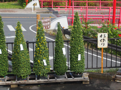 20191026・日光旅行2-05・杉作り