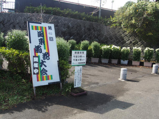 20191026・日光旅行2-03・目的は菊祭り
