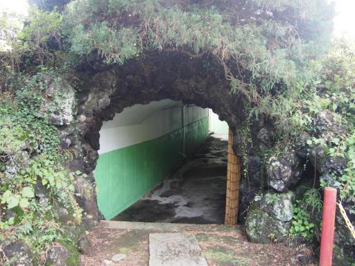 20191026・日光旅行3-21・帰りはトンネルを