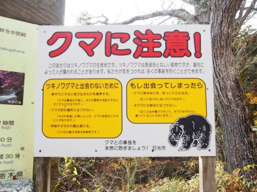 20191027・日光旅行9-03・熊さんに注意しながら・中