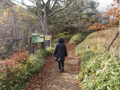 20191027・日光旅行9-02・上流にいい滝があるので