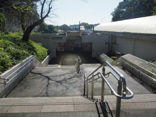 20191030・都立薬用植物園へ1-06・西武遊園地駅