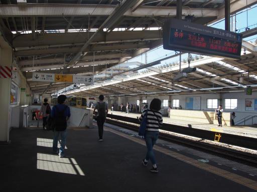 20191030・都立薬用植物園へ1-08・東大和市駅到着