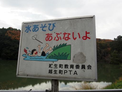 20191201・深谷ドライブネオン18・越生大亀沼