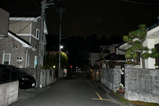 20200301・ニコン夜撮影空11(フラッシュ)