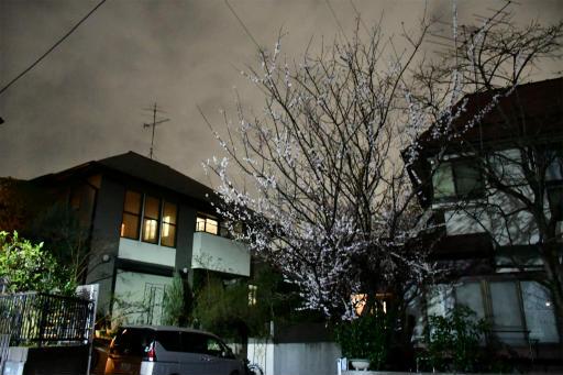 20200301・ニコン夜撮影空10(高感度)