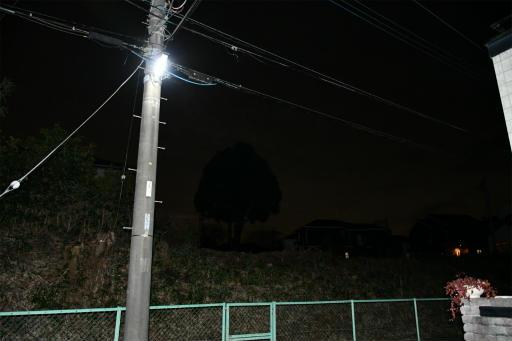 20200301・ニコン夜撮影02(フラッシュ)