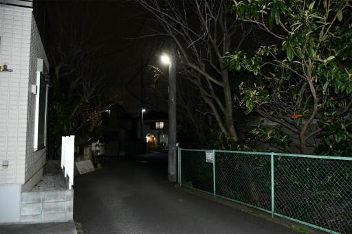 20200301・ニコン夜撮影03(フラッシュ)