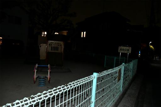 20200301・ニコン夜撮影15・桜田公園(フラッシュ)