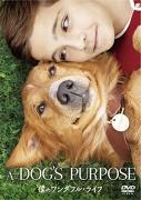 dogspurpose.jpg