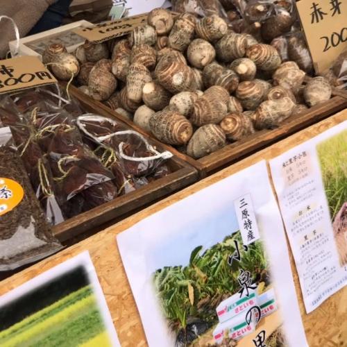 有機農家の収穫祭 6
