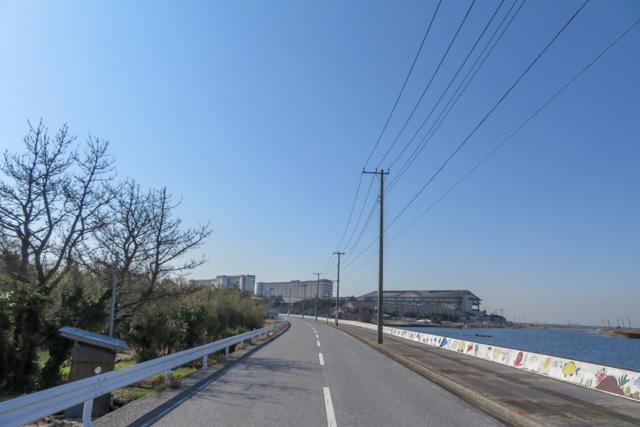 千葉フォルニア1(11)