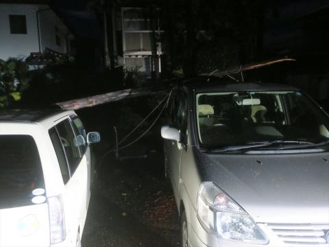 「台風19号被害。鯉のぼり竿が車3台を直撃しました。」① (7)_R