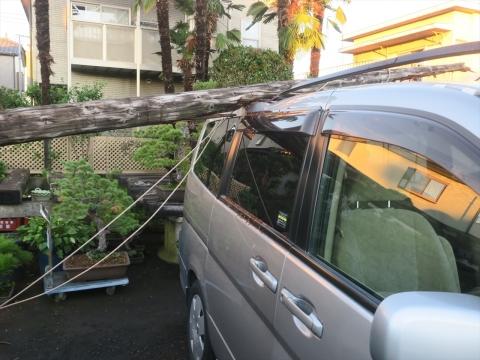 「台風19号被害状況」⑥_R