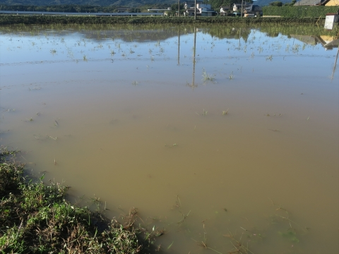 「台風19号被害状況調査対応」河瀬川・風返峠・湯袋峠・上曽峠⑬_R