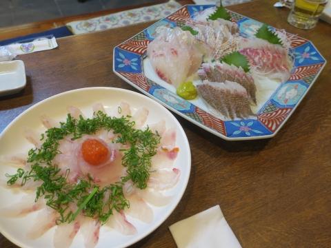 「軍鶏鍋(しゃもなべ)&真鯛の刺身&はたのカルパッチョ」かって屋昭和ごはん⑯_R