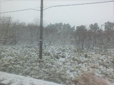 9猛吹雪1203