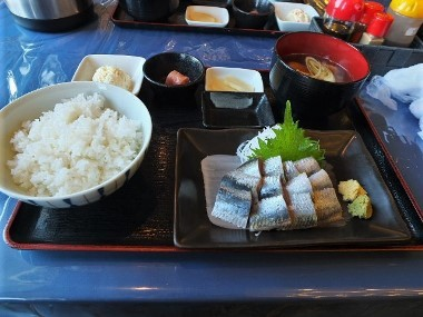 5いわし刺身定食0212 (2)