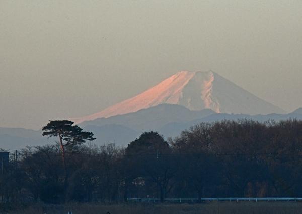 富士山 DSV_0678