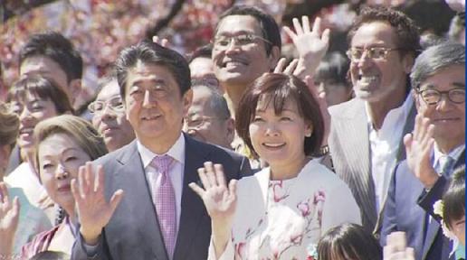 桜を見る会 NHK