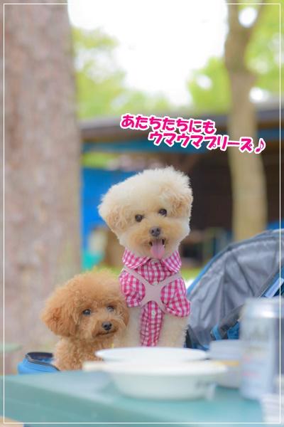 びわ湖BBQ♪nao_191026_0116