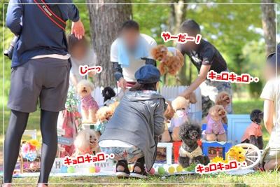 びわ湖BBQ♪nao_191104_0056