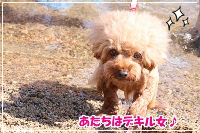 琵琶湖BBQ201908@みゆき_191107_0019