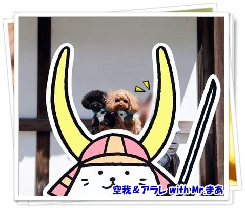 琵琶湖BBQ(待ち合わせ_彦根観光)_191119_0034