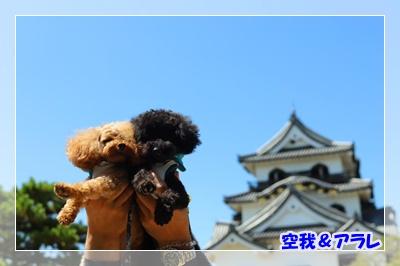 彦根城 あき_191119_0035