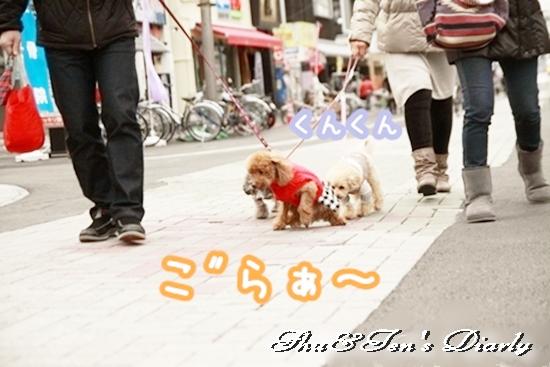 002eIMG_3138.jpg