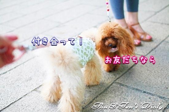 010eIMG_1392.jpg