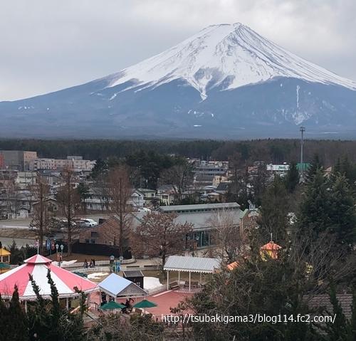 20200215器のある暮らし富士山