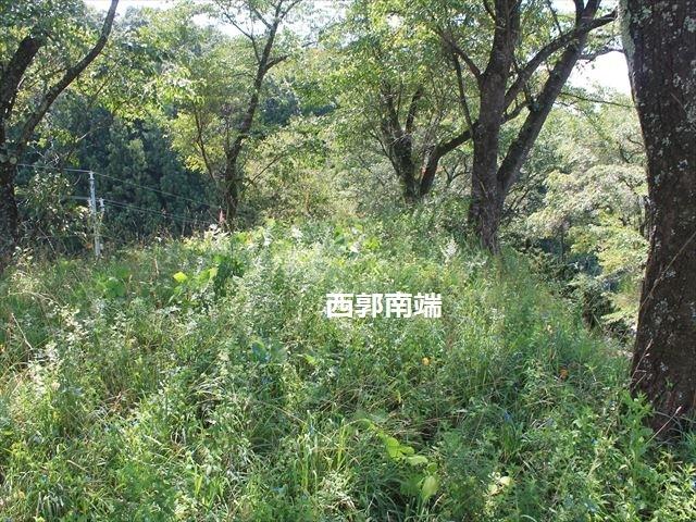 愛宕城IMG_4541