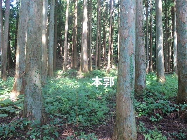 小野城IMG_4491