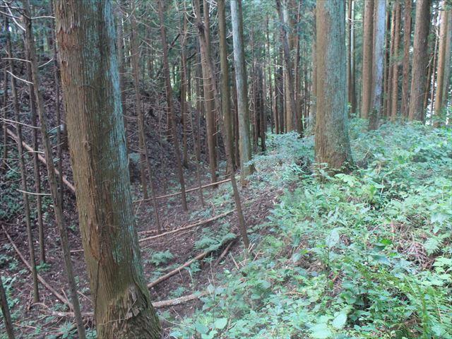 小野城IMG_4500