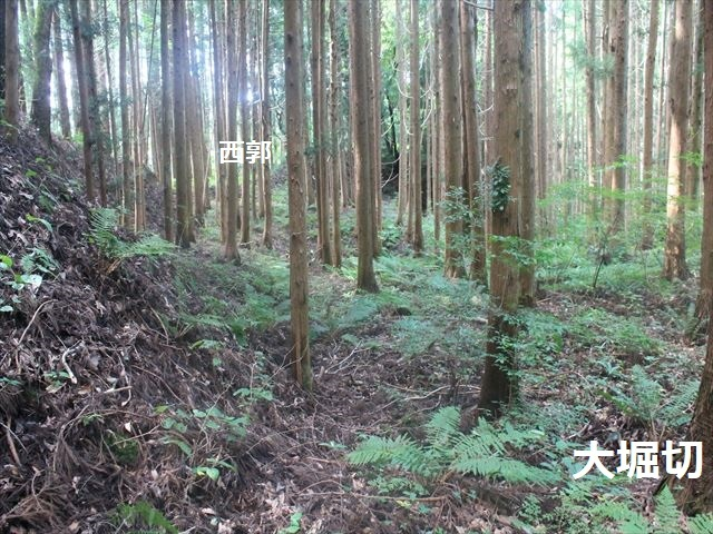 小野城IMG_4505