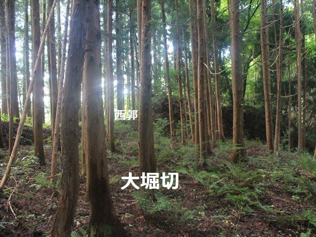小野城IMG_4507