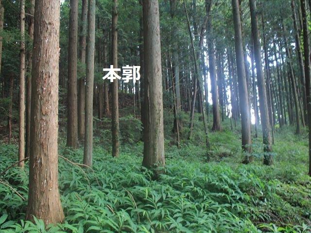 小野城IMG_4510