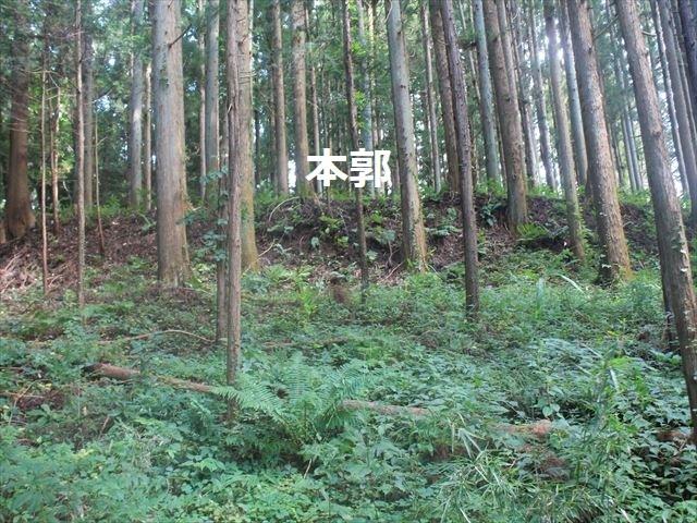 小野城IMG_4511