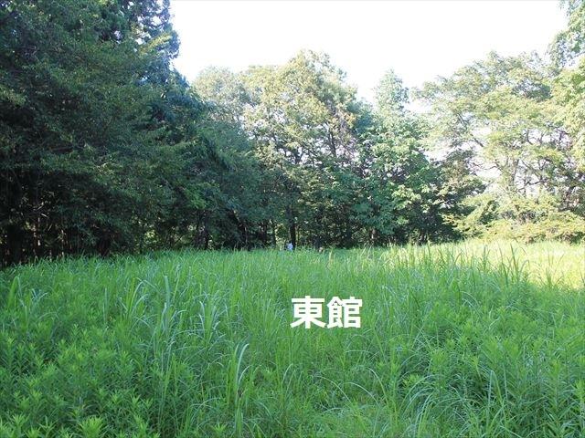 三春城③IMG_4687