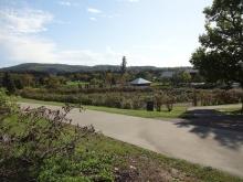 ハマナスの丘から見た整形式ローズガーデン方向