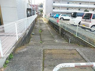 nokawa1504-2.jpg