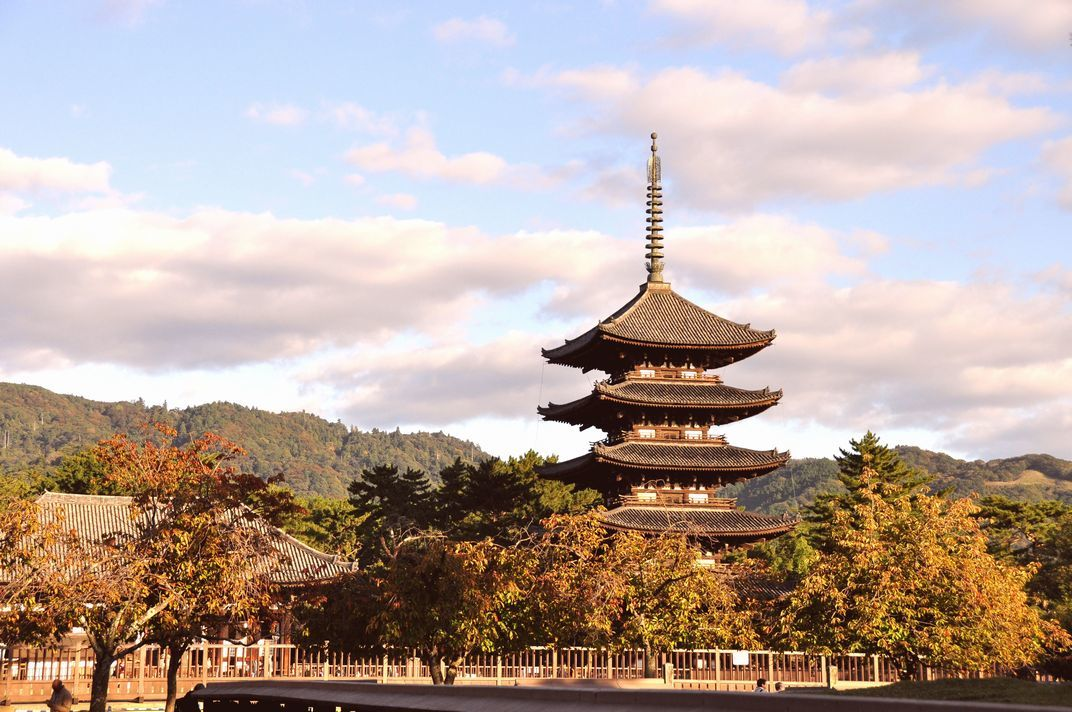 「陽に映える五重の塔」奈良市興福寺